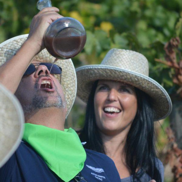 Taller de viñas y vendímia - 12